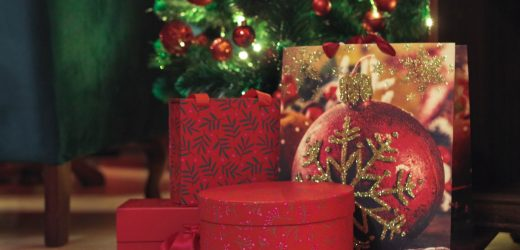 Top 6 Great Christmas Gift Ideas for Your Girlfriend